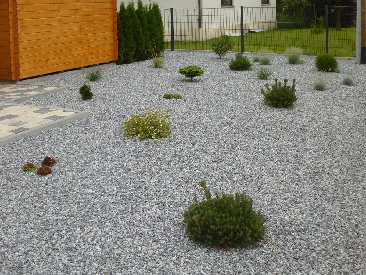 Zurück in die Steinzeit in deutschen Gärten | Garten-Gehölze